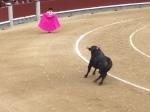 Bullfight in Las Ventas