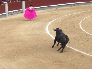 Bullfight in Las Ventas