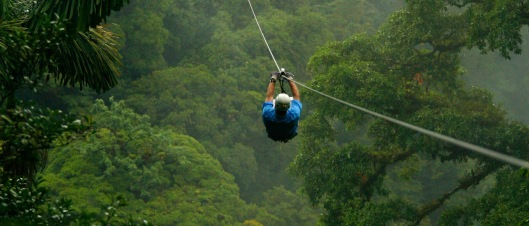 canopy-pic