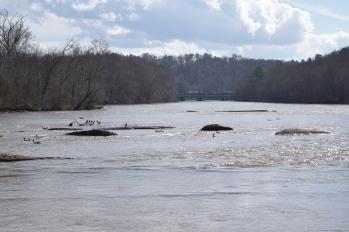 The river that runs through Sandy Springs